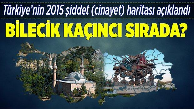Türkiye'nin 2015 şiddet (cinayet) haritası açıklandı