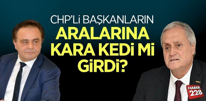 CHP'li Başkanların Arasına Kara Kedi Mi Girdi?