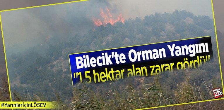 """Bilecik'te Orman Yangını """"1,5 hektar alan zarar gördü"""""""