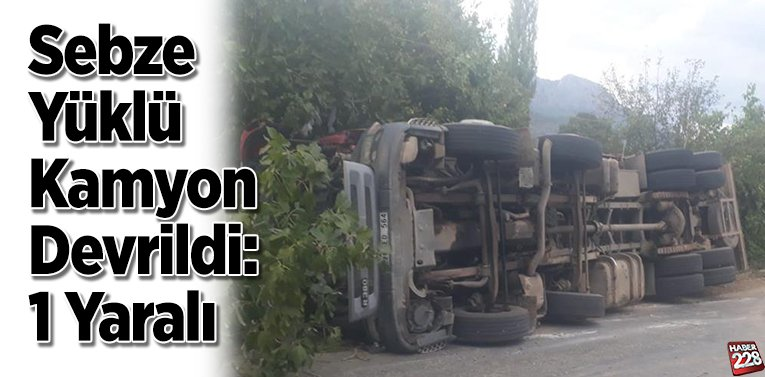 Bilecik'te sebze yüklü kamyon devrildi, 1 yaralı