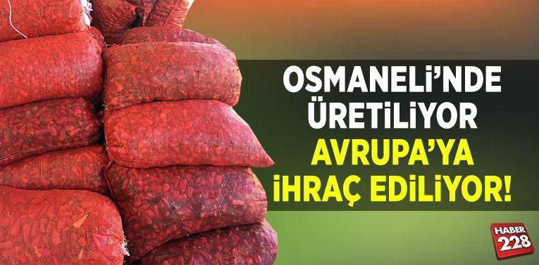 Osmaneli'nde Üretiliyor Avrupa'ya İhraç Ediliyor!